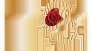 Logo Vanityfit