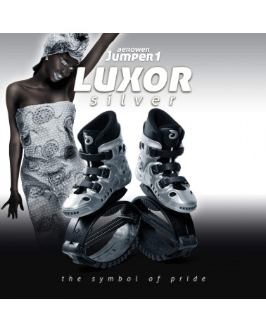 Jumper Luxor Silver (Plateadas)